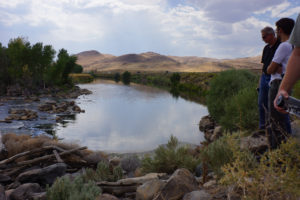Restoration on the Truckee River (Mimica 2015)